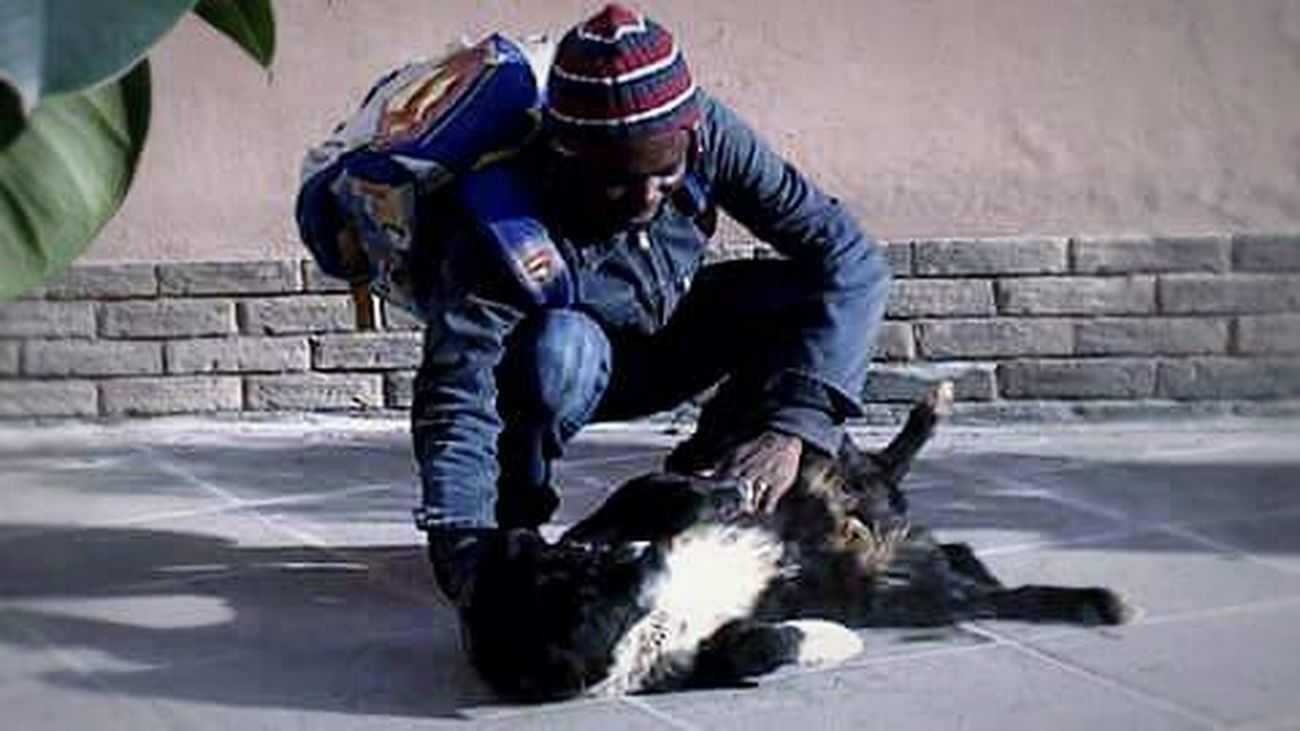 South Love Unconditional Love Love Animal Love Human Think Different Both Homeless