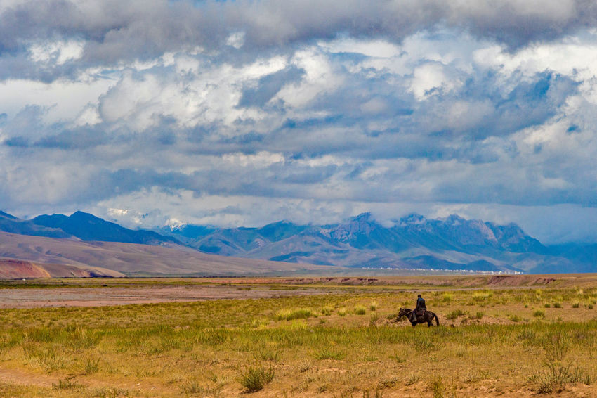 Kyrgyzstan Pamir Mountains Animal Themes Animals In The Wild Beauty In Nature Cloud - Sky Day Field Grass Horse Horserider Landscape Mammal Mountain Nature No People One Animal Outdoors Pamir Scenics Sky