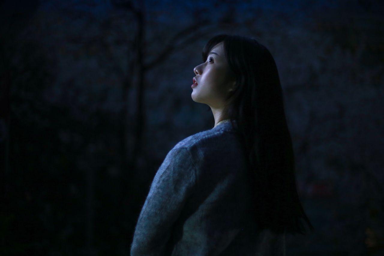 Moonlight Moonlight Light And Shadow Night Park Sakura Tenderness