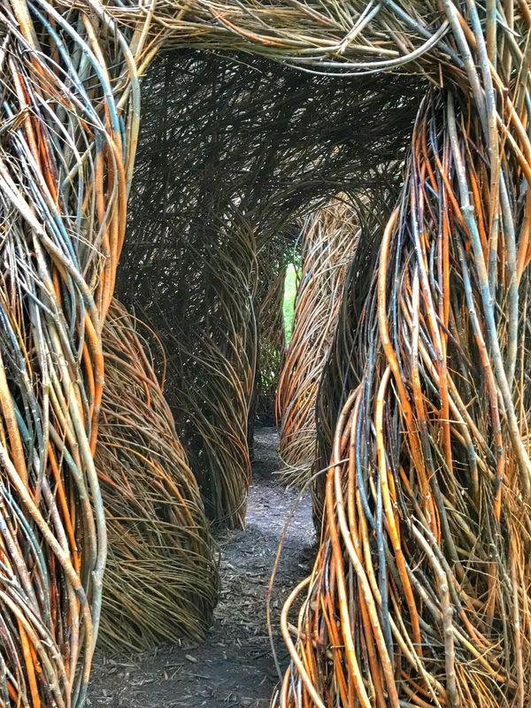 Detail of 'Stickwork' By Patrick Dougherty Art Natural Materials Saplings McKee Botanical Garden