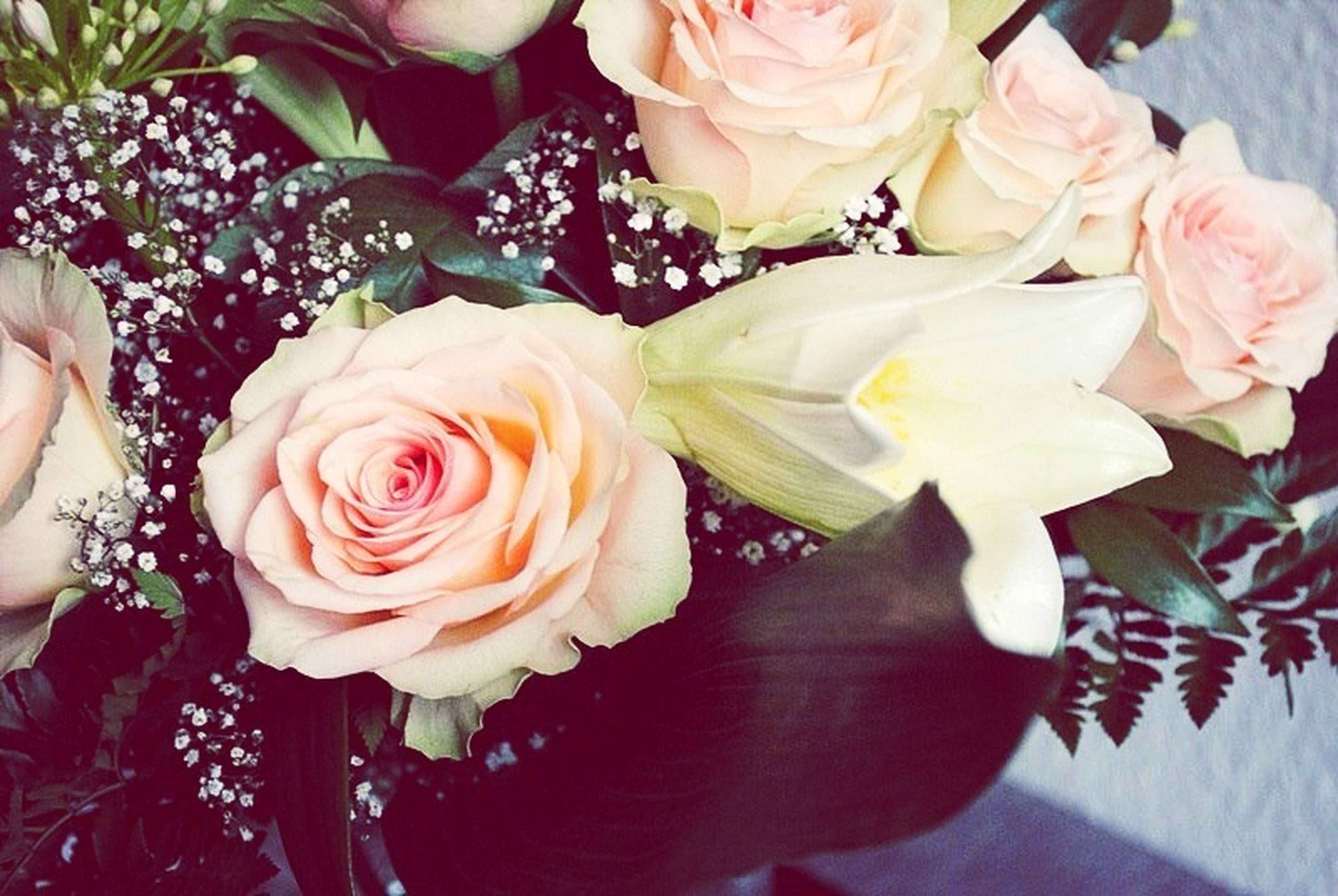 flower, rose - flower, freshness, petal, flower head, fragility, bouquet, indoors, rose, beauty in nature, pink color, close-up, high angle view, bunch of flowers, nature, blooming, vase, growth, in bloom, blossom