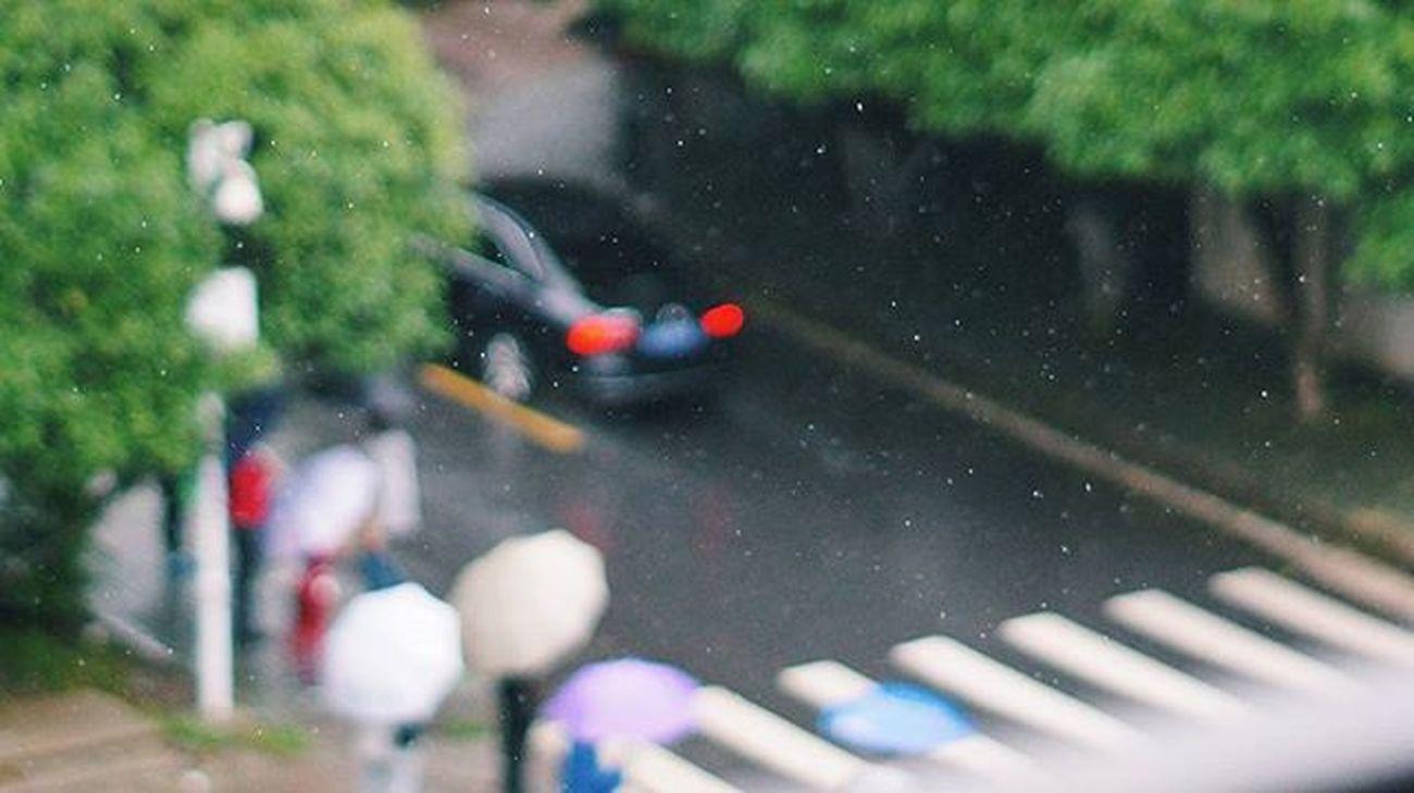 비온다~ 일상 빗방울 감성사진 내가찍음 스냅사진 스냅 사진에관하여 Snap Photography Photo VSCO On_photo . . . 중국 우한 中国 武汉 소니 넥스6 Sony Nex6 미놀타 Minolta 美能达 minolta md 50mm f1.7