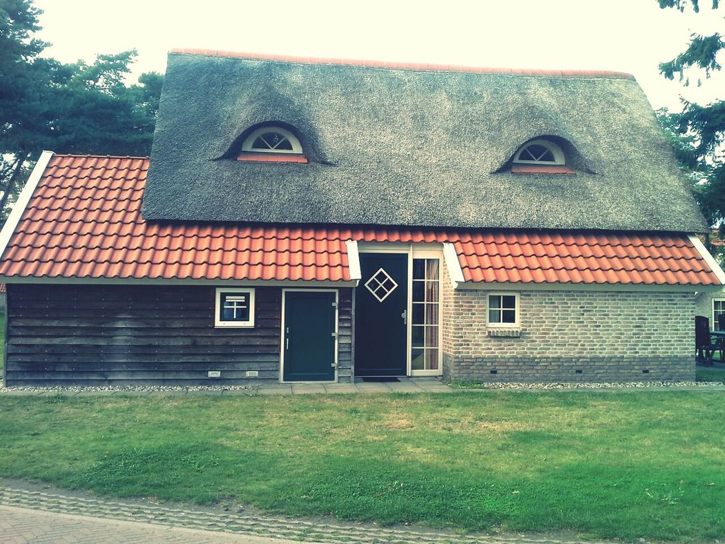 Netherlands visit! Beautiful country....very interesting houses, I could imagine a cartoon of this house :)