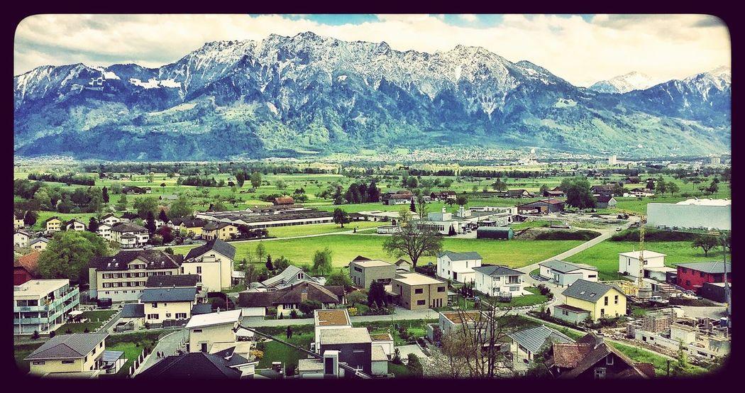 Found On The Roll EyeEm Nature Lover Switzerland EyeEm IPhone Photography