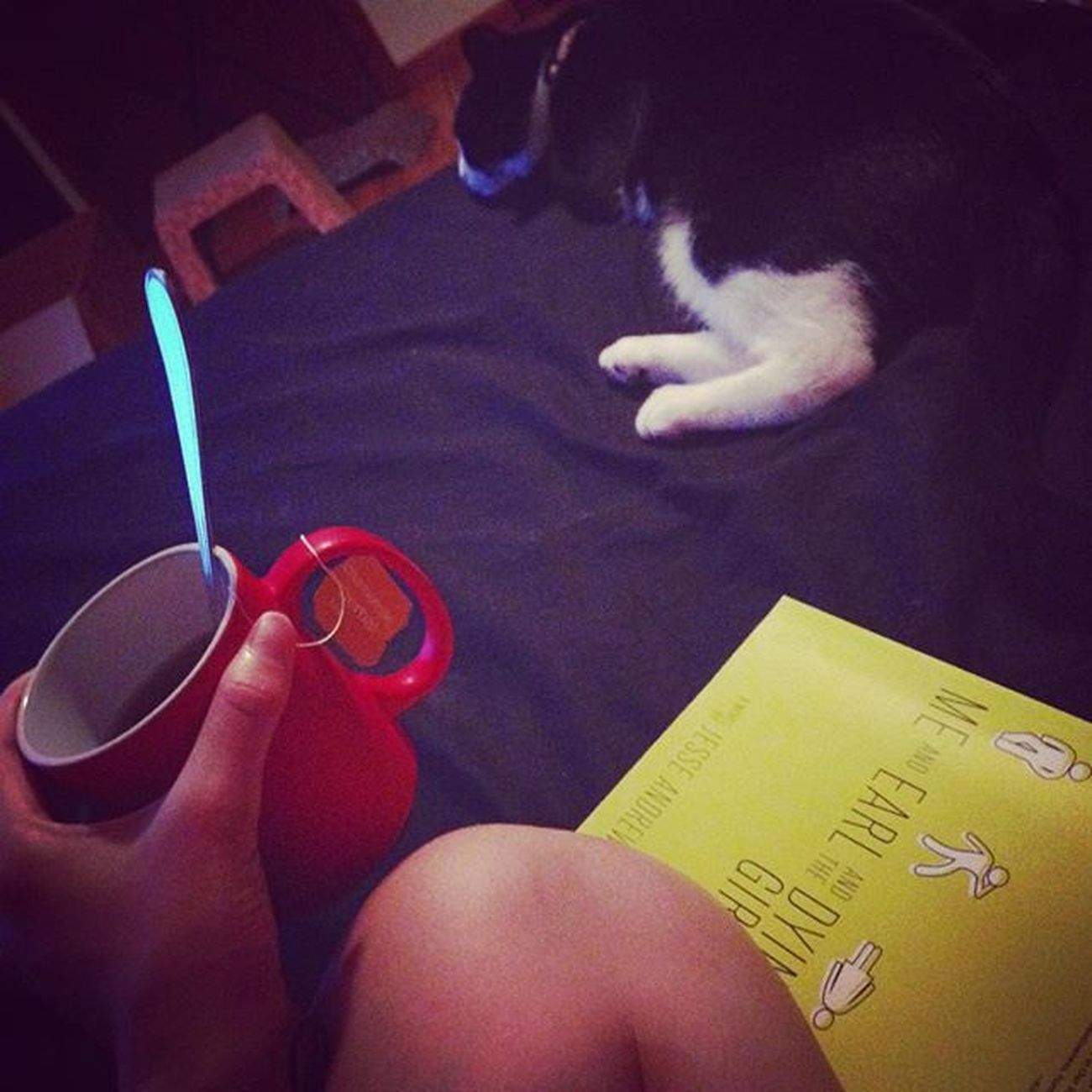 Does it get any better than this? Relaxing night with a hot cup of tea, a good book, and a great companion. Cat Kitty Dj Blackandwhitecat Goodbook Meearlandthedyinggirl Relaxingnight Relaxation Aah Content Hottea ChamomileTea Chamomile Yum