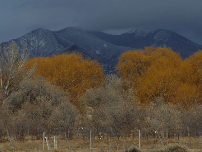 Fall Beauty Landscape Majestic Mountain Mountain Range Nature Orange Color Scenics Taos New Mexico Tranquility
