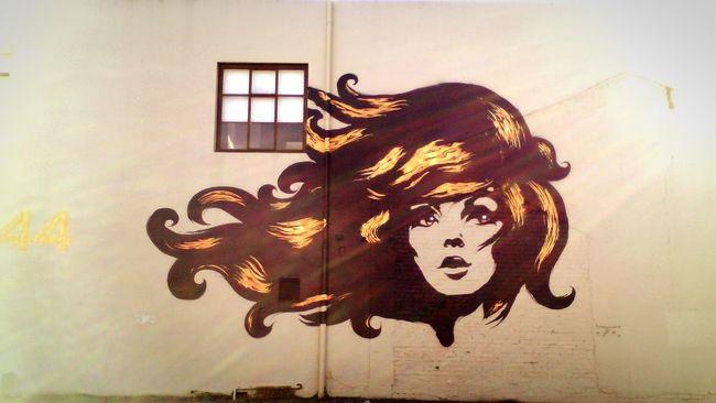 Art on Ghuznee Street Street Art Wall Building Urban Wellington