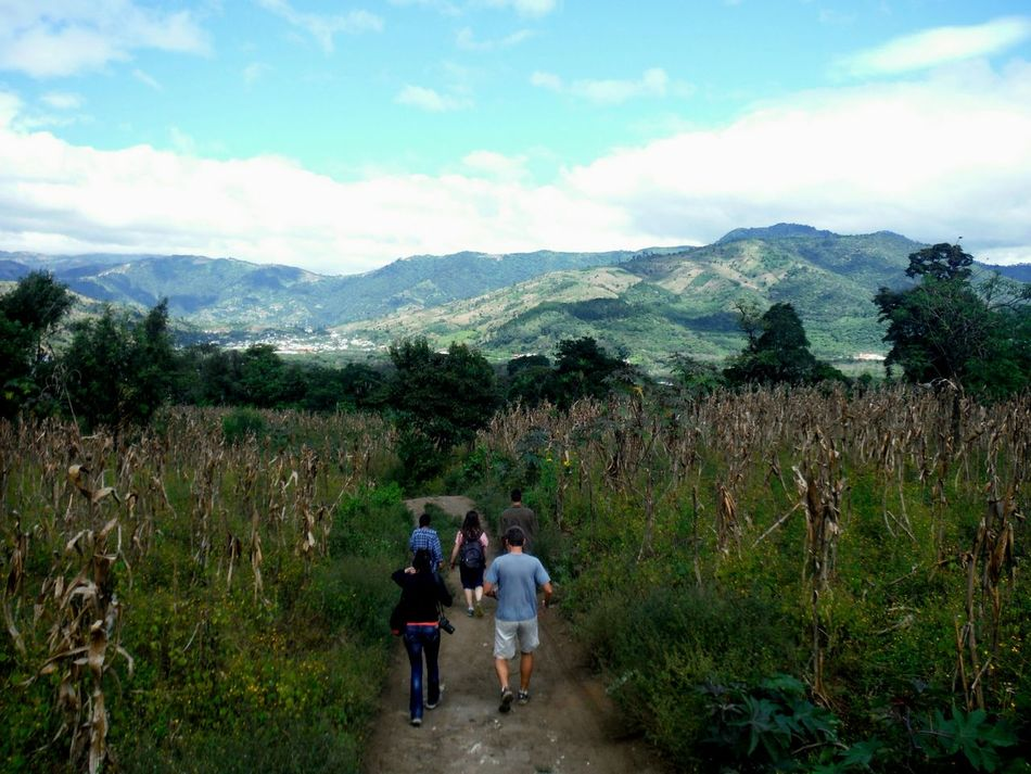 My fellow As Green As It Gets volunteers heading down the mountain after a hard day working with Guatemalan coffee farmers Antigua, Guatemala The Day Is Done Working In The Field Heading Home The Following Volunteering Mountain View Mountains Field Work Corn Field Antigua Guatemala As Green As It Gets... Mountain Range On The Way Going Down The Mountain Beautiful Landscape Antigua Guatemala Fujifilm Finepix Xp60