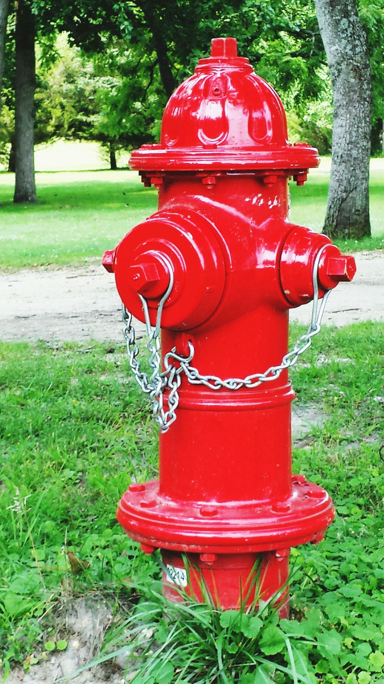Fire Hydrant Taking Photos Interesting Wharton Park Popular Fun Nature Relaxing Artistic EyeEm Best Shots