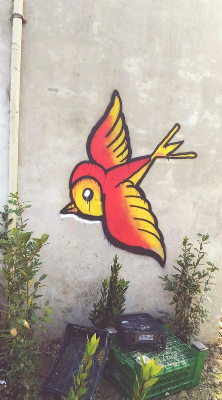 Graffiti Dipinto Murale Rosso Butterfly - Insect Day One Animal No People Multi Colored