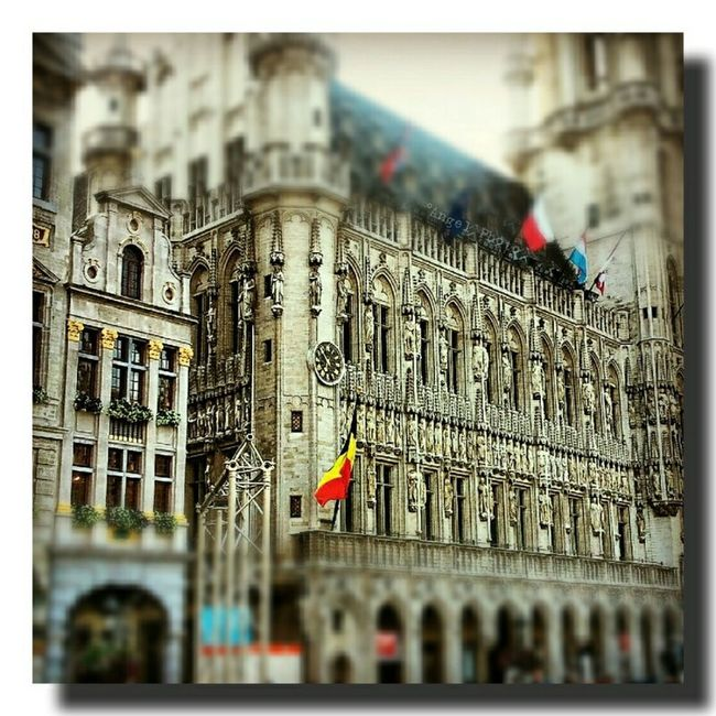 Gran Plaza de Bruselas..... Streamzoofamily Somosfelices Arquitecture Brussels❤️