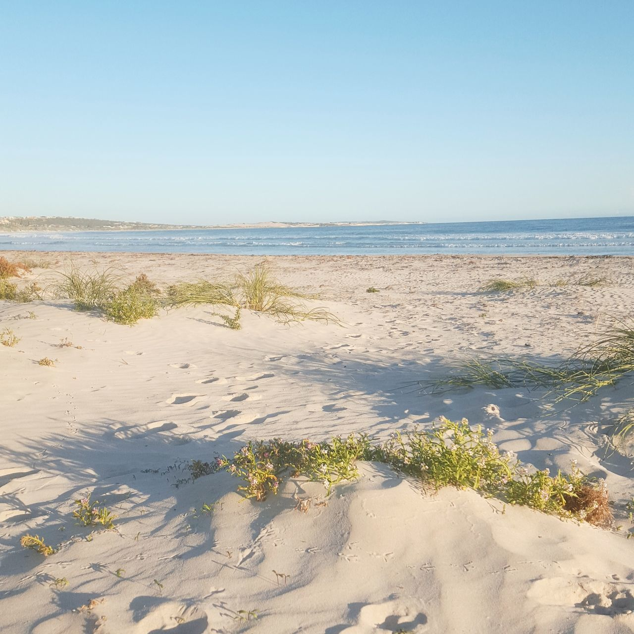 sea, beach, water, sand, nature, horizon over water, scenics, beauty in nature, tranquility, tranquil scene, shore, outdoors, day, clear sky, sunlight, no people, sky