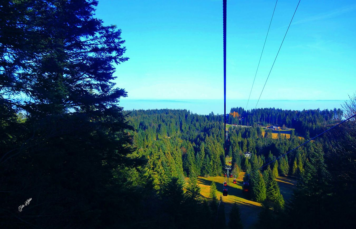 Mt.pilatus Lucerne Switzerland Tree_collection  Traveling Landscape_photography Cable Car Clouds And Sky Nature