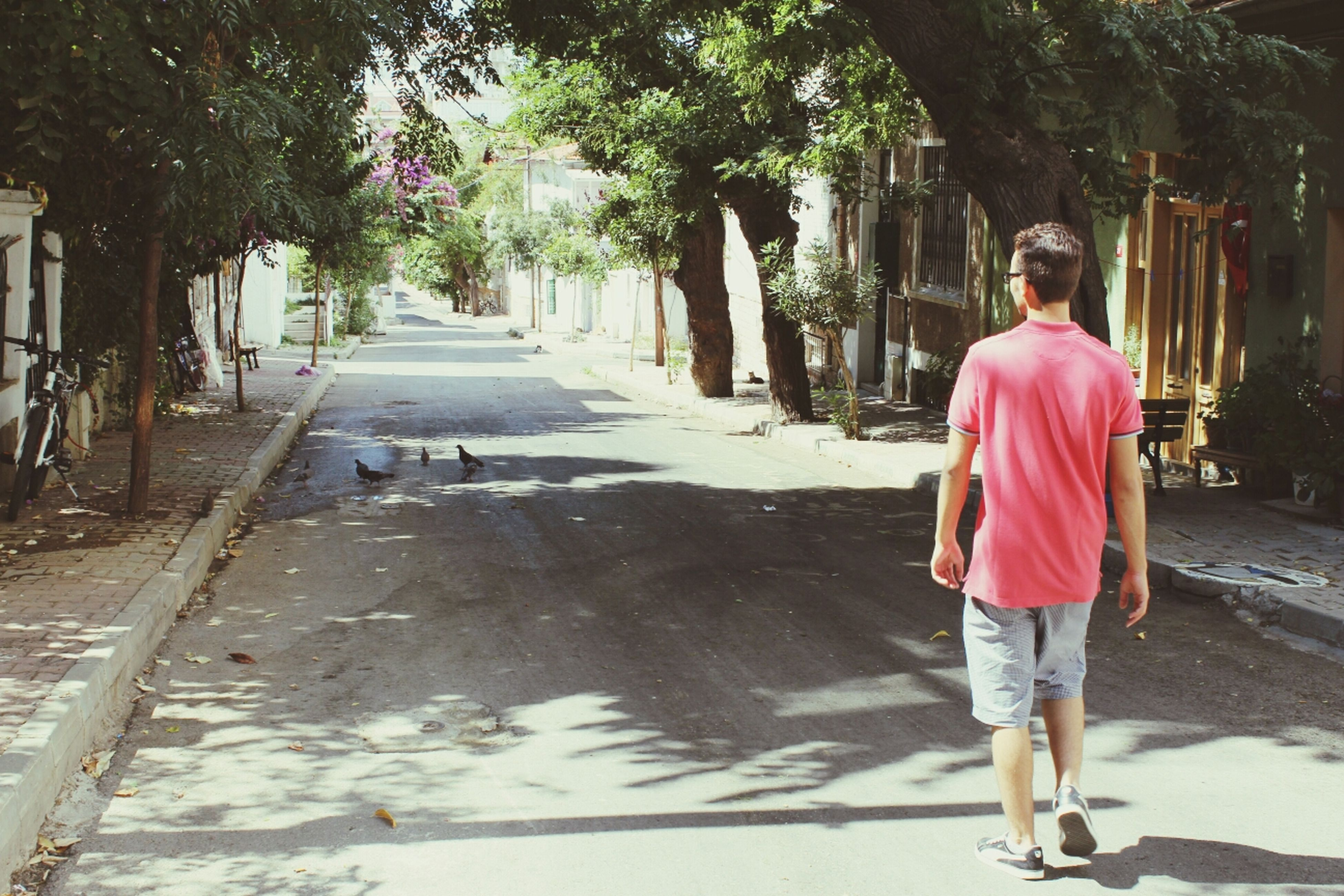 full length, lifestyles, casual clothing, rear view, leisure activity, walking, tree, street, standing, the way forward, person, footpath, men, road, childhood, girls