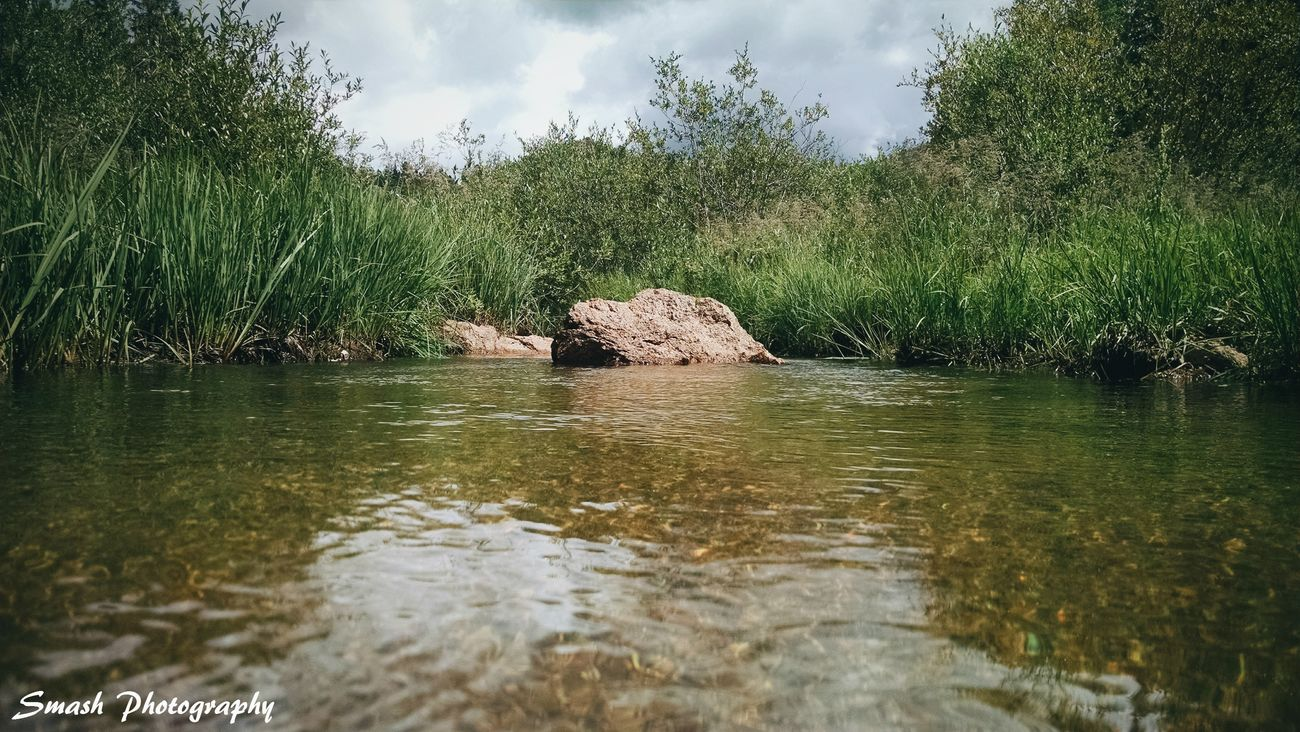 Colorado Colorado Photography Water Nature No People Beauty In Nature Scenics Outdoors Outdoorlife Creek Stream Boulder Rock - Object Lowangleview Nature_collection Outdoorphotography Wanderlust Viewcolorado Exploremore Explore Tranquility Wilderness GetoutsideNaturelovers Peaceful