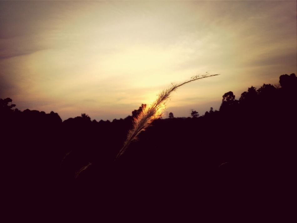 Sunset Myhometown Lovely