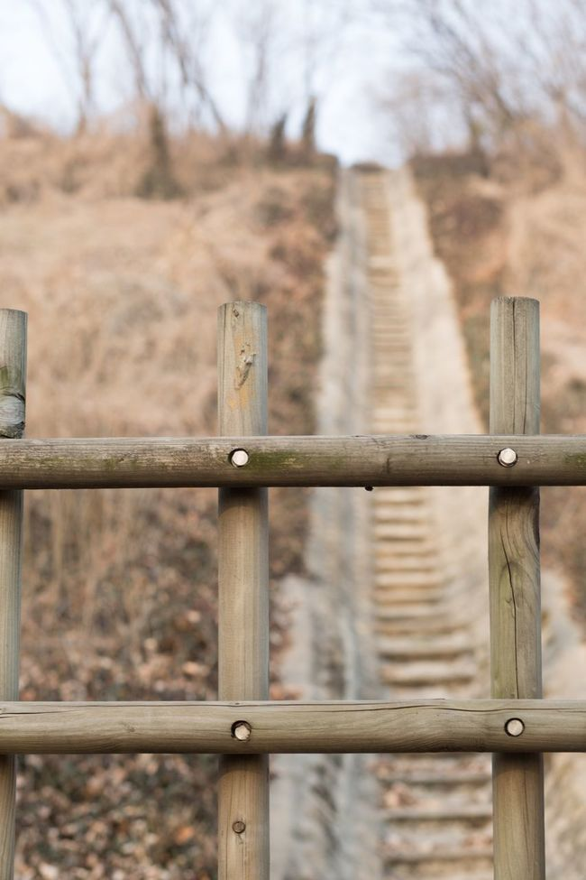 Safety Protection Fence Security Focus On Foreground Metal Railing Barbed Wire Separation Day Barb Wire No People