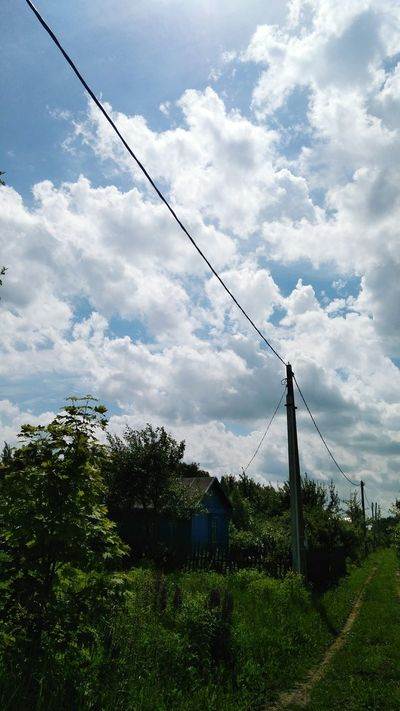 Cable Cloud - Sky Electricity  Sky Power Line  Connection No People Power Supply Fuel And Power Generation Technology Day Telephone Line Outdoors Tree Electricity Pylon Complexity Nature 3XSPUnity EyeEm 3XSPhotographyUnity 3XSPUnity EyeEm Gallery Russia 3XSP Russia EyeEmNewHere Plant