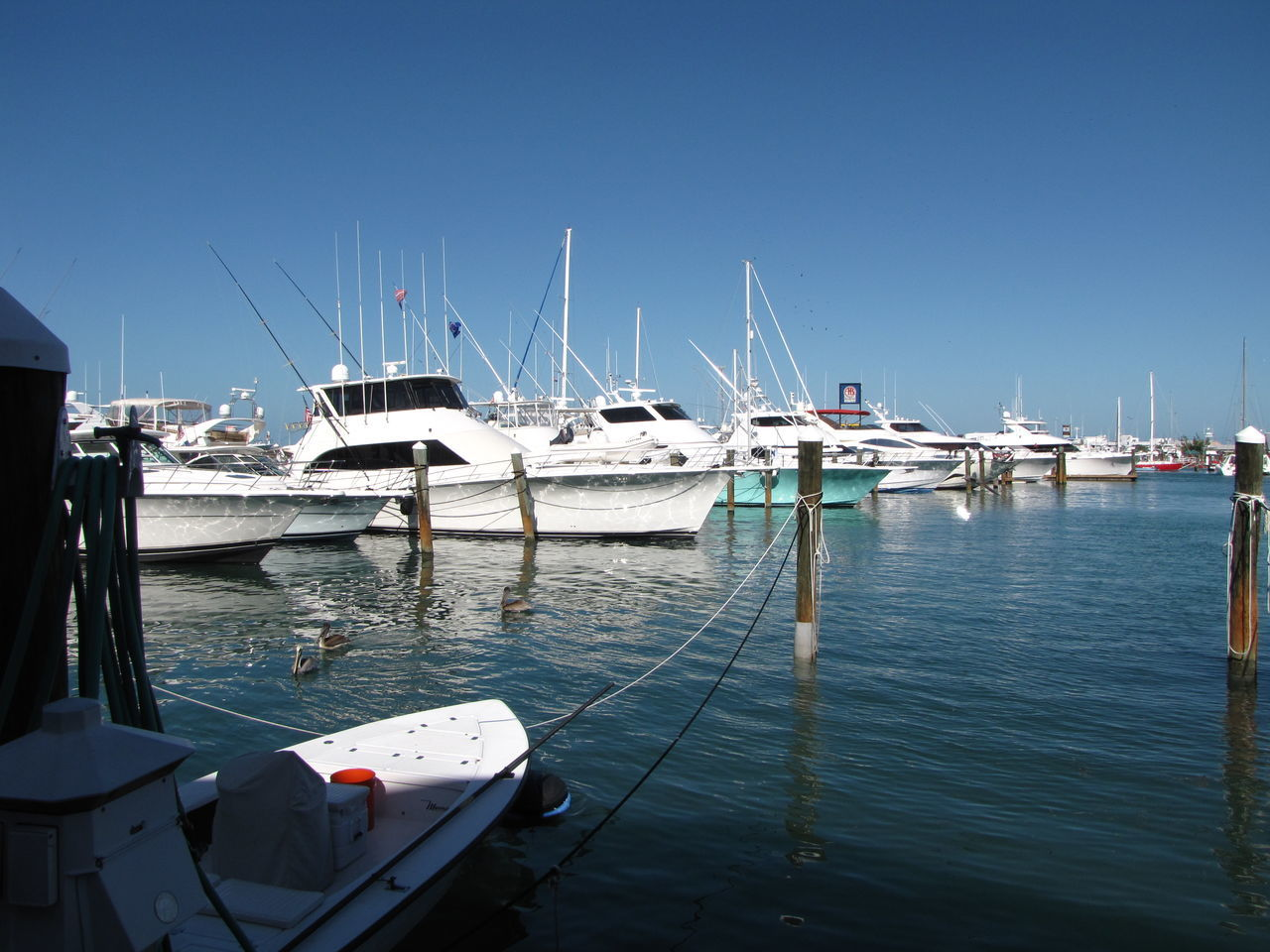 Marina Anchored Boats Architecture Beauty In Nature Clear Sky Day Destination Docks Harbor Journey Marina Mode Of Transport Moored Nature Nautical Vessel No People Outdoors Sailboat Sea Sky Transportation Water Yacht Yachting