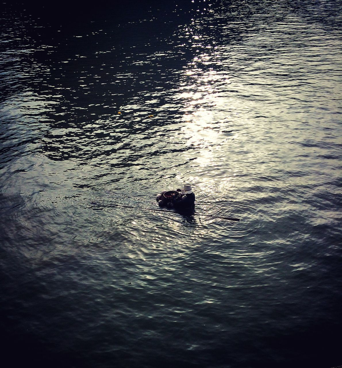 water, animal themes, waterfront, one animal, swimming, nature, animals in the wild, high angle view, rippled, outdoors, no people, silhouette, lake, beauty in nature, animal wildlife, day, sunset, mammal, bird, swan