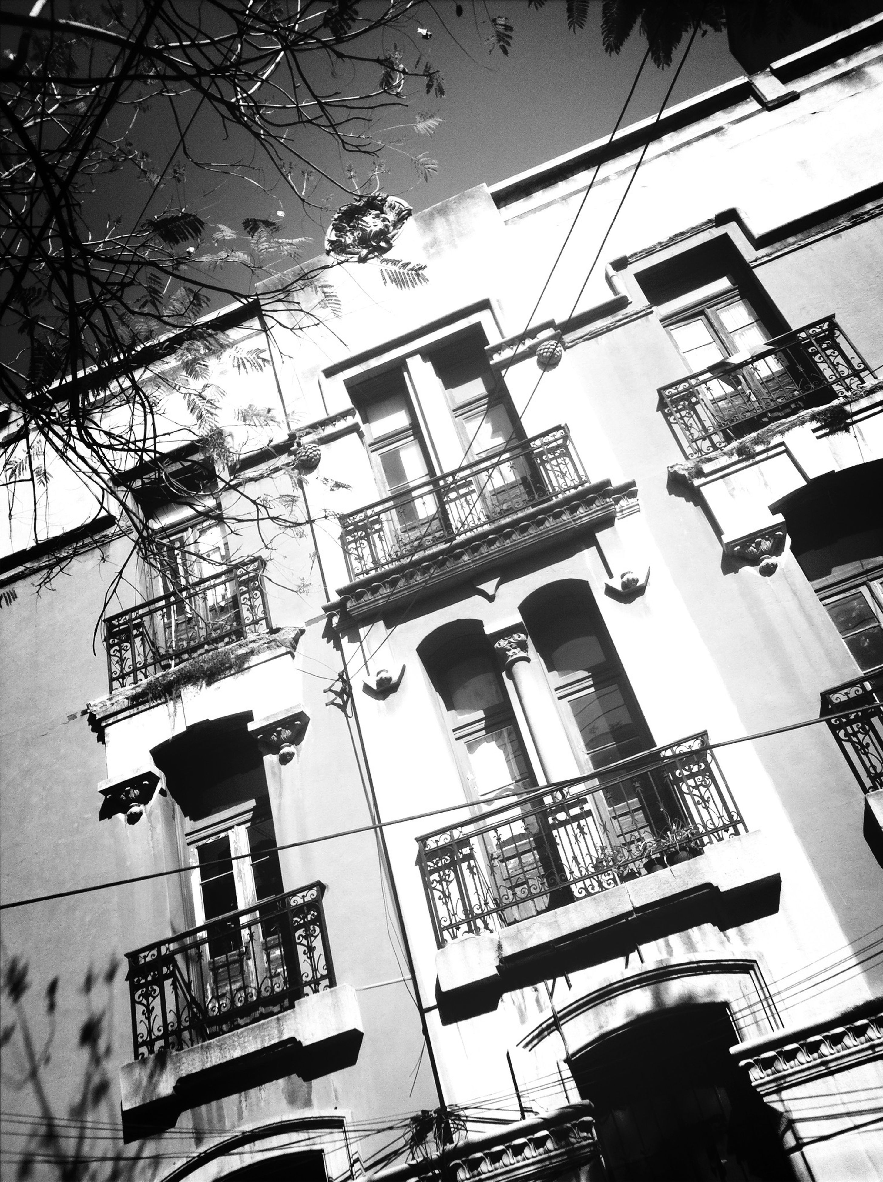 building exterior, architecture, built structure, low angle view, residential building, building, window, residential structure, tree, house, city, sky, day, outdoors, branch, balcony, no people, street light, apartment, sunlight