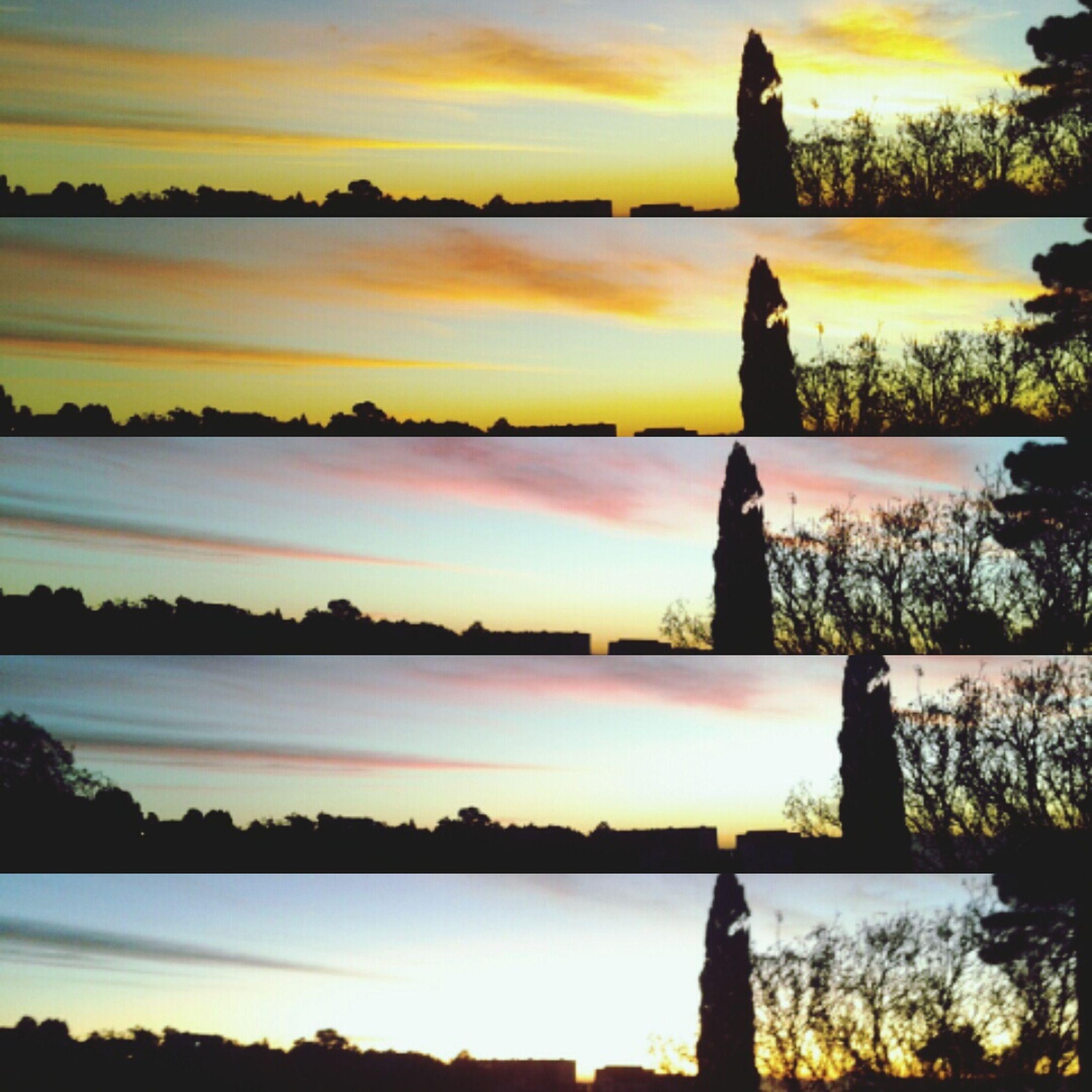 Showcase: December Taking Photos Enjoying Life Hello World Early Morning Earlyclass Bouzareah