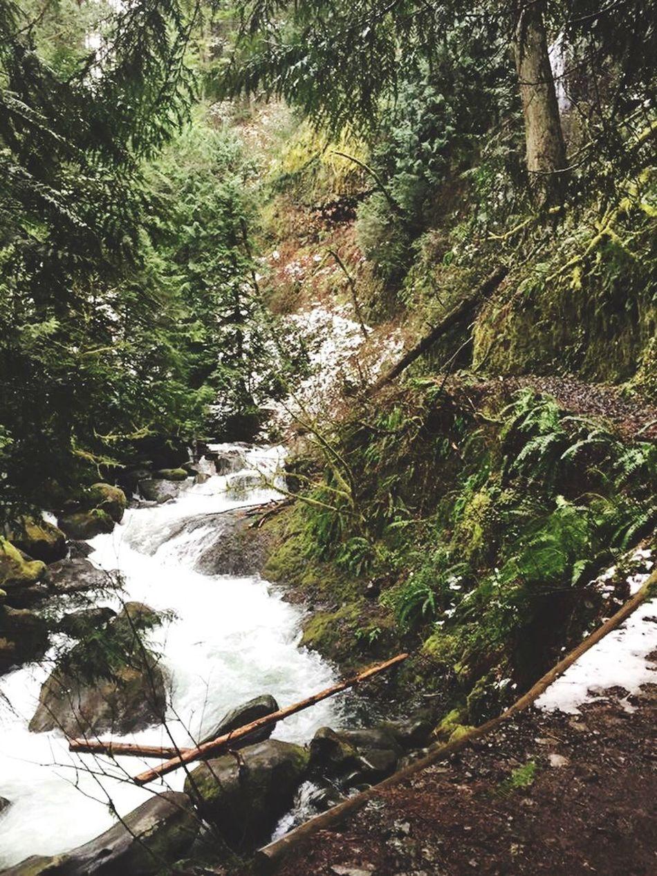 Oregon Nature Multnomah Falls  Multnomah Falls Oregon Multnomah Hike Trail