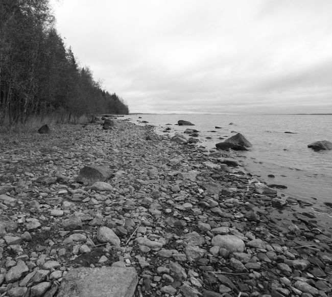 Rocky beach in autumn, and it was cold there today. I photomerged two photos on Adobe Photoshop Elements. Beach Beauty In Nature Black And White Calm Cloud - Sky Coastline Day Idyllic Lake Monochrome Photography Nature No People Non-urban Scene Outdoors Pebble Remote Scenics Shore Sky Stone - Object Tourism Tranquil Scene Tree Water