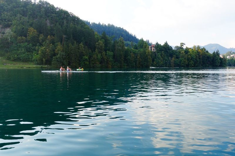 Bled, Slovenia Water Tranquil Scene Tranquility Tree Scenics Mountain Reflection Forest Beauty In Nature Nature Lake Waterfront Non-urban Scene Lush Foliage Outdoors Solitude Non Urban Scene Vacations Distant Calm Rowing Rowboat