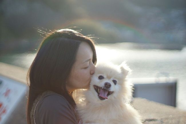 Nofilter EyeEm Dog Lover Mylovelydog Pomeranian