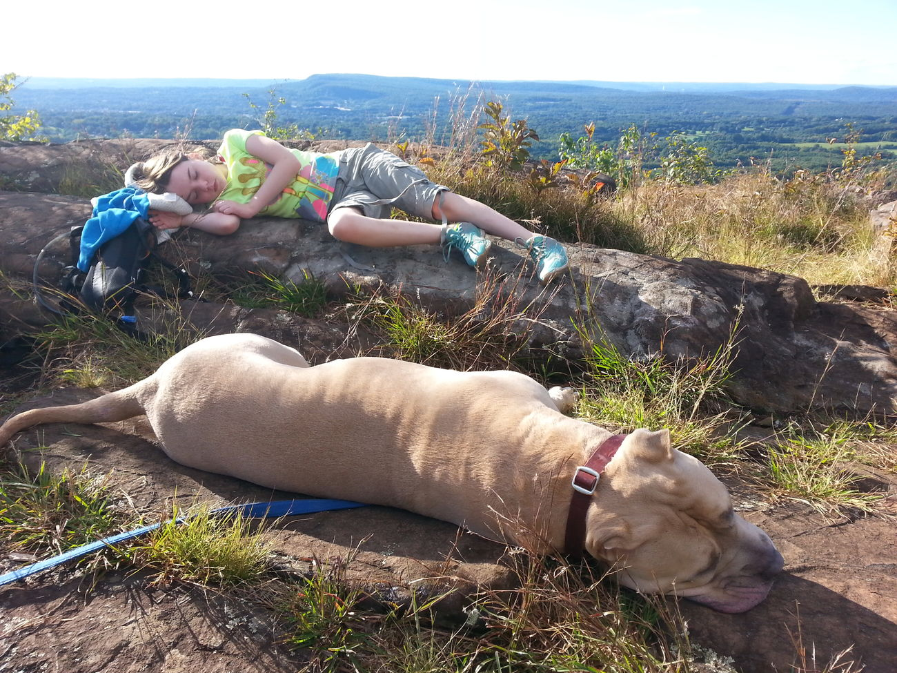 Relaxation Outdoors Getting Away From It All Lying Down Hiking Family American Bully Senic