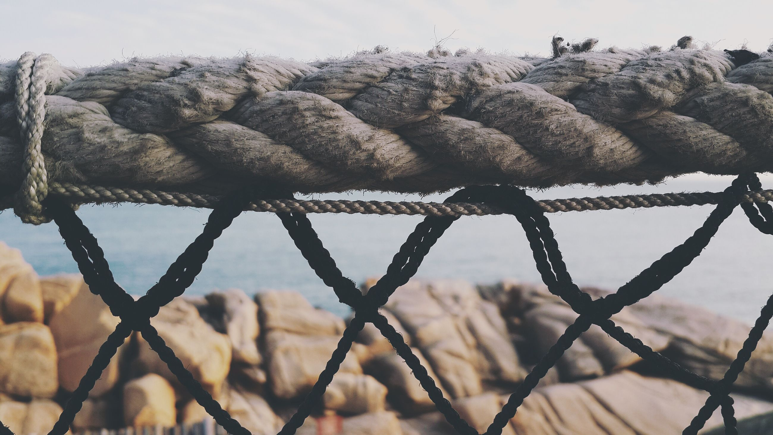 fence, sky, focus on foreground, protection, barbed wire, safety, chainlink fence, close-up, day, metal, security, nature, low angle view, dry, outdoors, rope, no people, perching, bird, animal themes