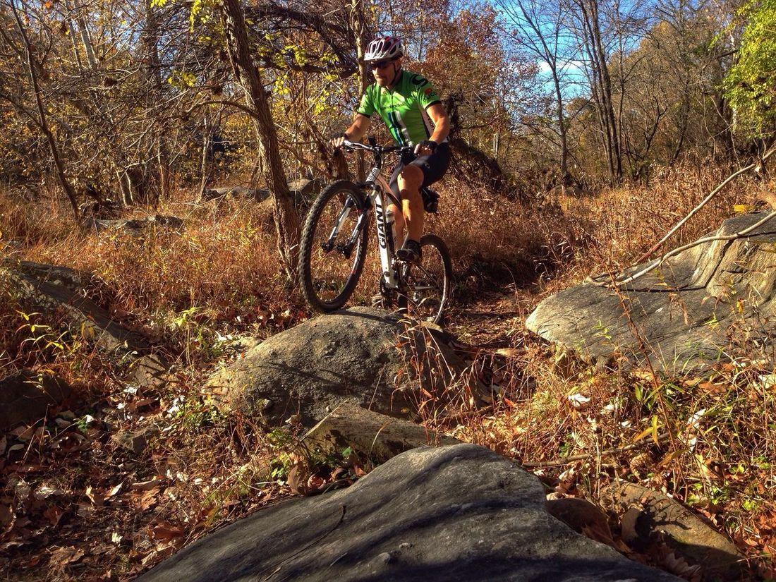 Turtle hopping Mountain Goat Biking EyeEm Nature Lover Exploring The Human Condition