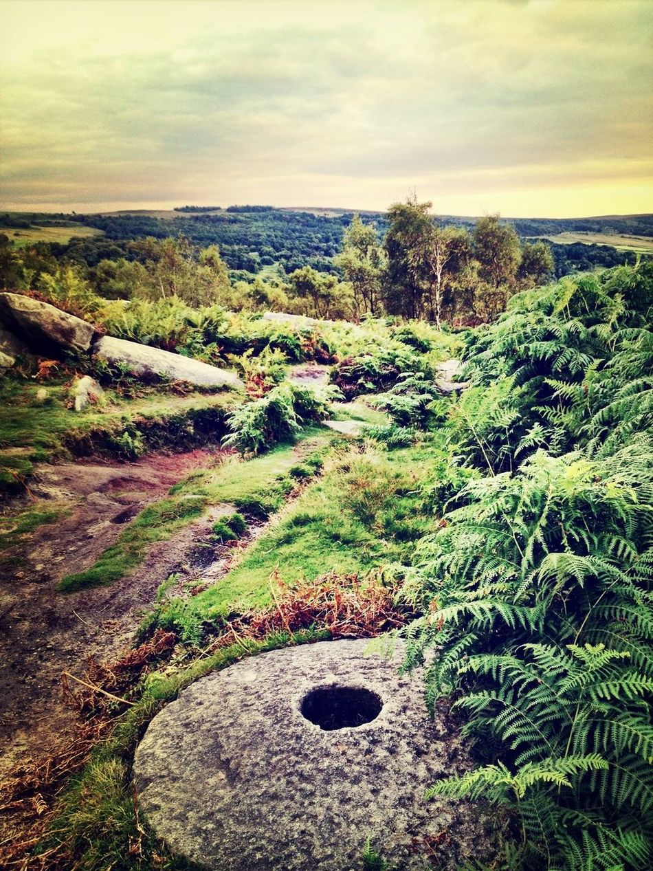 these old millstones are dotted all around this area, and make for an interesting walk! Landscape_Collection Nature_collection EyeEm Best Edits EyeEm Best Shots