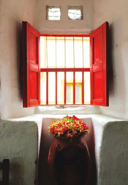 Red Window, flowers Flowers Window Wall