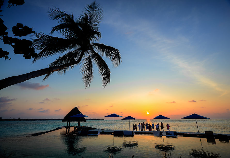 Beautiful Maldives Sunset and people gathering for the sunset activity of baby shark feeding Beach Calm Clouds Coastline Horizon Over Water Light Maldives Ocean Outdoors Palm Palm Tree Palm Trees Sand Sea Shark Shark Feed Shore Sunstet Tranquil Scene Tranquility Vacations Water