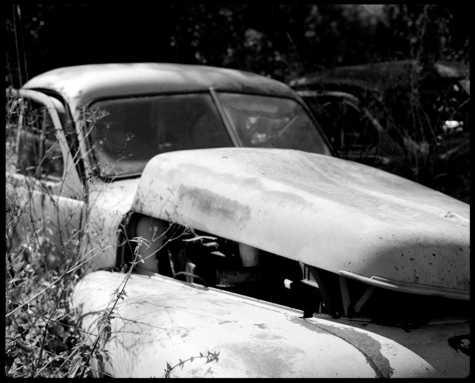 Singular beauty of decay in Båstnäs Abandonded Abandonded Cars Analogue Photography Apocalypse Art Black And White Broken Cars Båstnäs Båstnäs Car Cemetery Båstnäs Töcksfors Car Cemetery Cars In Forrest Civilization Decay Eerie Engine And Plants Force Of Nature Metal And Rust Plants In Cars Summer Sweden Travel Trees In Cars Vintage Cars Wreckage