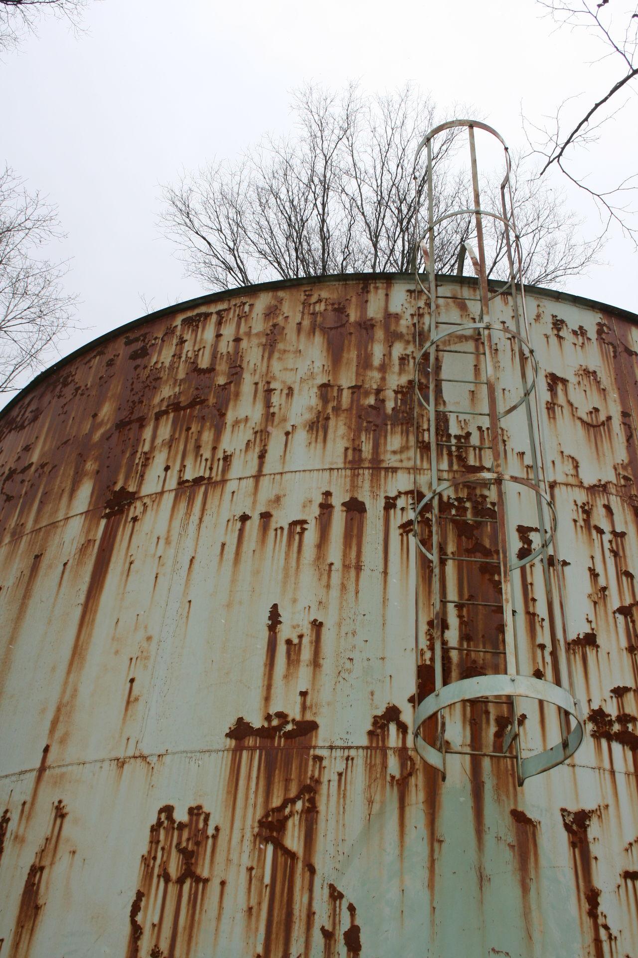 Architecture Bare Tree Building Exterior Built Structure Day Ladder Low Angle View No People Old Outdoors Rusty Sky Water Tank Water Tower Water Tower - Storage Tank Watertank Watertower