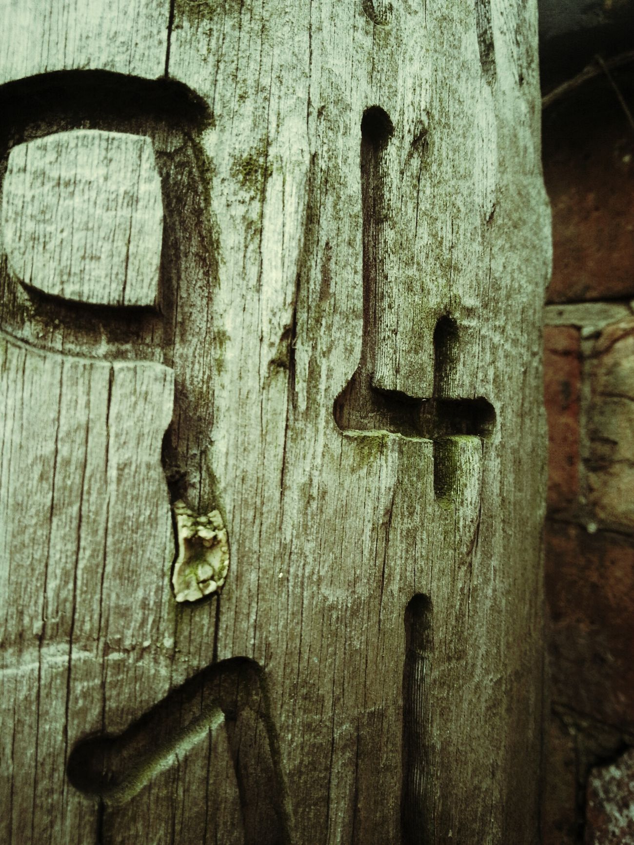 Close Up My Neighborhood Walking Around Town Carved In Wood