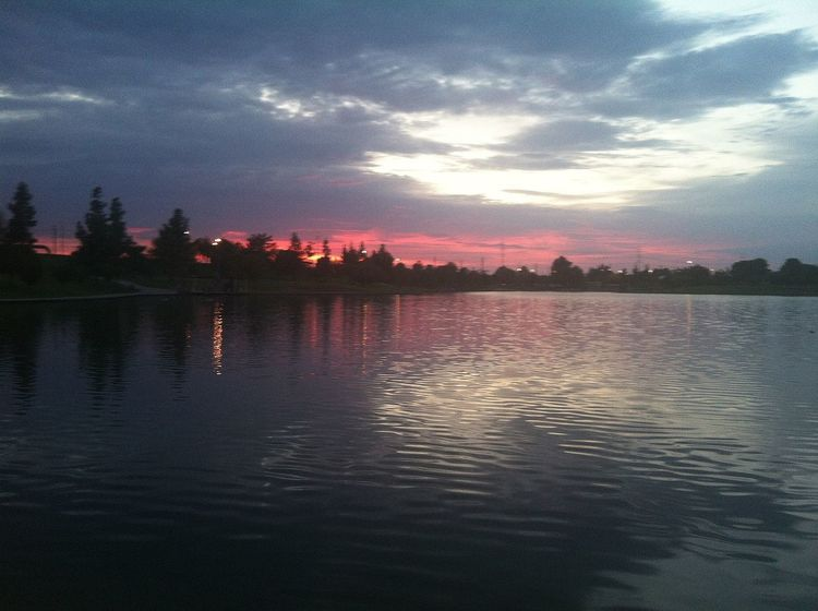 evening run.