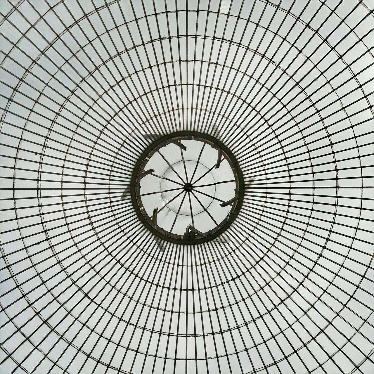 Just Look Up Glass Roof Architectural Detail