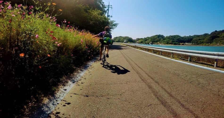 Beach Beautiful Day Beauty In Nature Beside The Sea Bike Tour Cycling Day Flowers Japan Nature No People Outdoors Plant Sand Sea Shimanami Kaido Summer Sunlight Tranquil Scene Tree Vacations