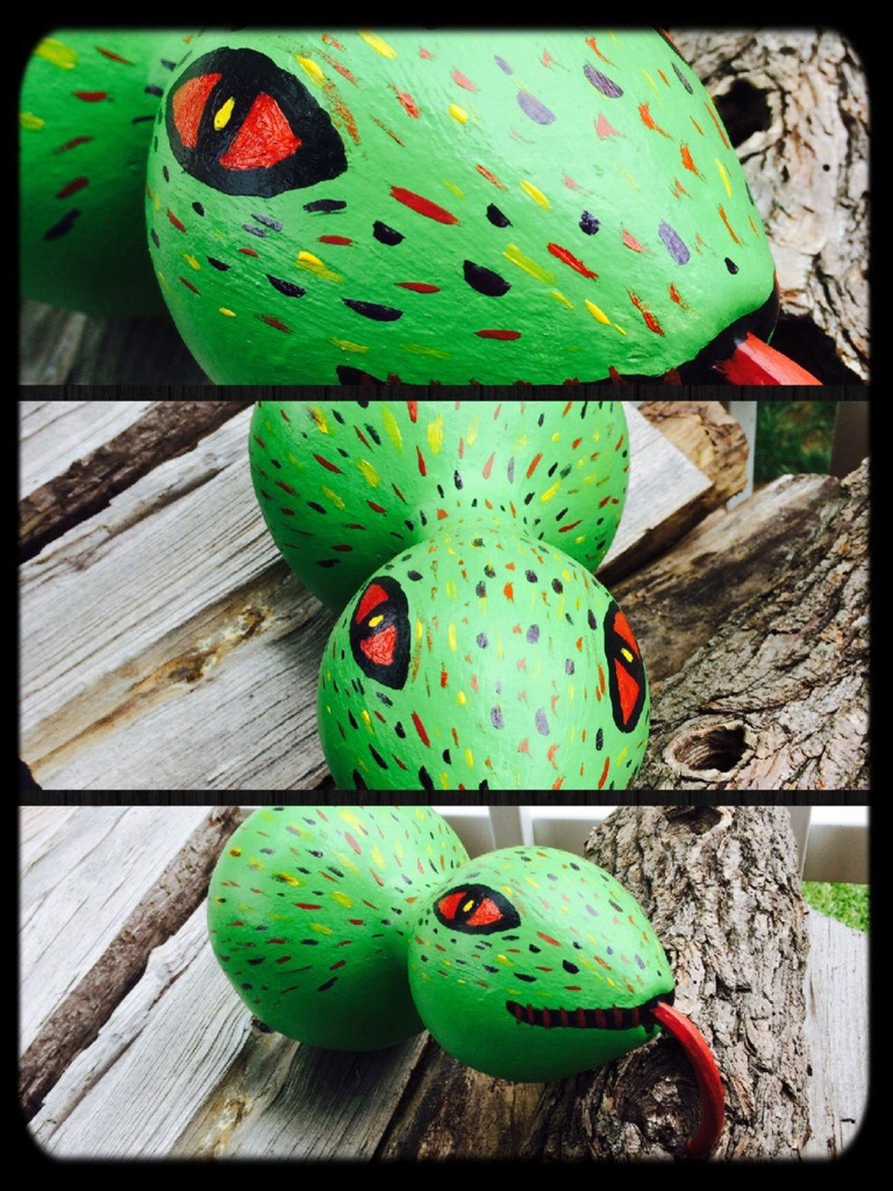 I give you Gourd Snake! Snakegourd Gourds Decorativegourdseason Summer ☀