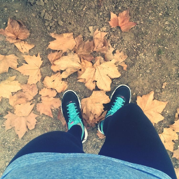 Autumn Colors November