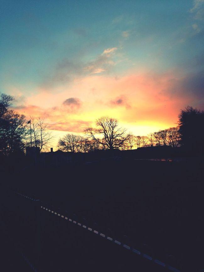 EyeEm Best Shots - Sunsets + Sunrise EyeEm Best Shots Skyporn Sunrise_sunsets_aroundworld