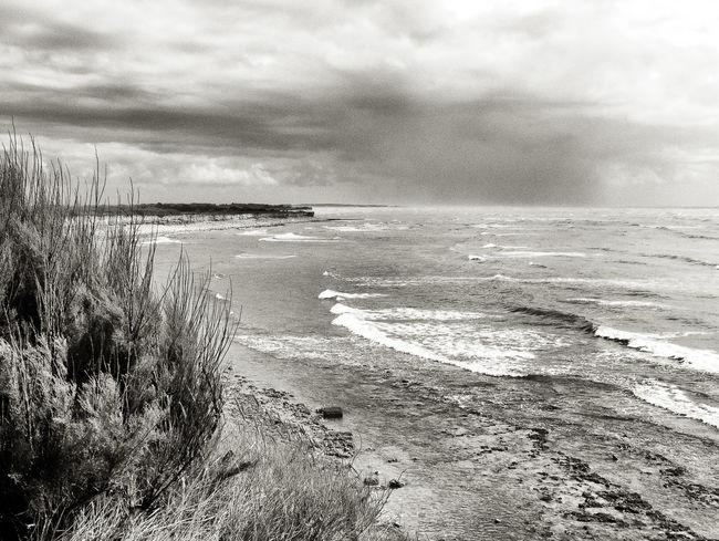 Black & White Blackandwhite Chassiron Côte Atlantique Ile D'Oleron Noir & Blanc  Ocean Sea Sea And Sky Waves France 🇫🇷