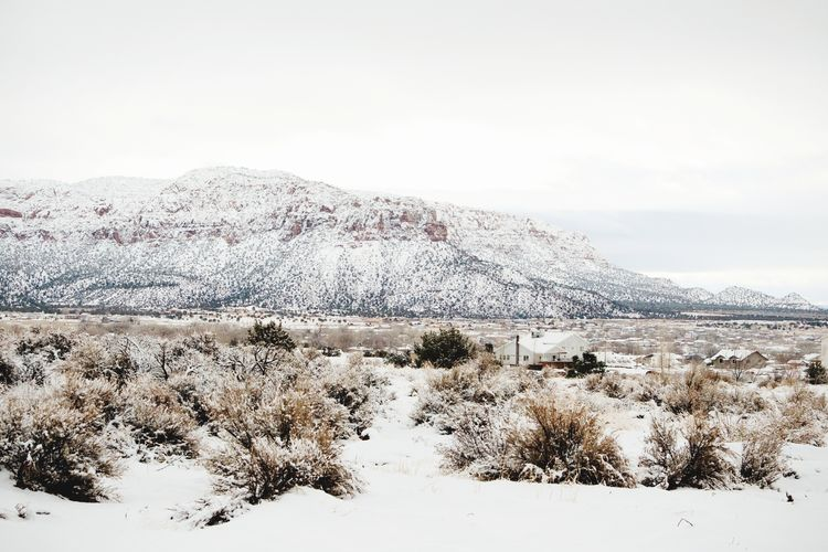 Snowy desert scene Cold Temperature Snow Nature Beauty In Nature Winter Mountain Cloud - Sky No People Outdoors Scenics Snowy Landscape Cold Days Rural Scene Winter Wonderland Wintertime Weather Landscape Beauty In Nature Frozen Desert Winter Arizona Nature