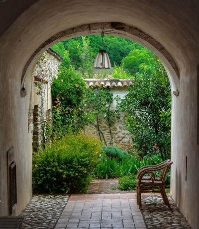 Aquila Earthquake Abruzzo Architecture Bench Chair Day Garden Grass Growth Italy Ivy Lamp Nature No People Outdoors Photography Plant Spring Spring Flowers Springtime Tourism Tourist Town Travel Destinations Travel Photography Tree First Eyeem Photo