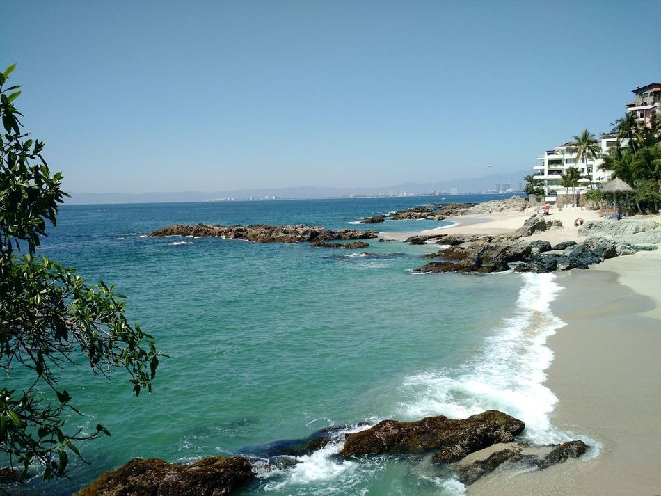 Sea Beach Water Horizon Over Water Clear Sky Scenics Travel Destinations Day Outdoors Palm Tree Sky Tree Nature No People Mexico Palm Tree Puertovallarta Puerto Vallarta Mexican Sunsets Beauty In Nature