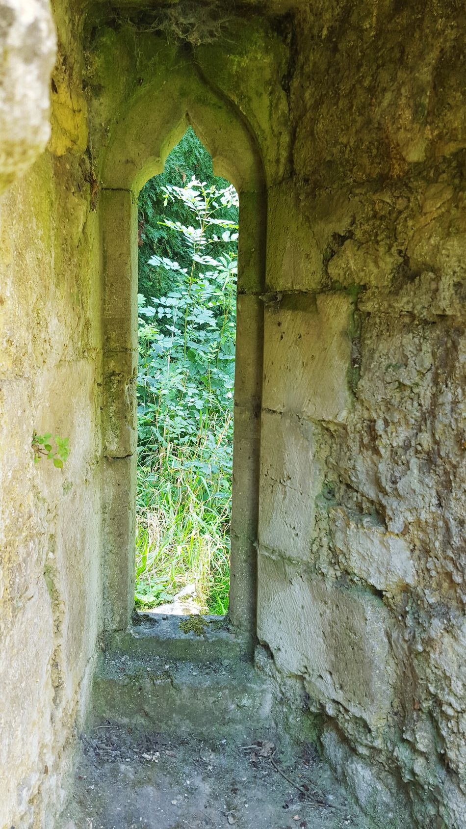 Arch Itecture Arched Windows Ruins Abby Days Out Historic Places Historical Building Architecture_collection Creative Eye